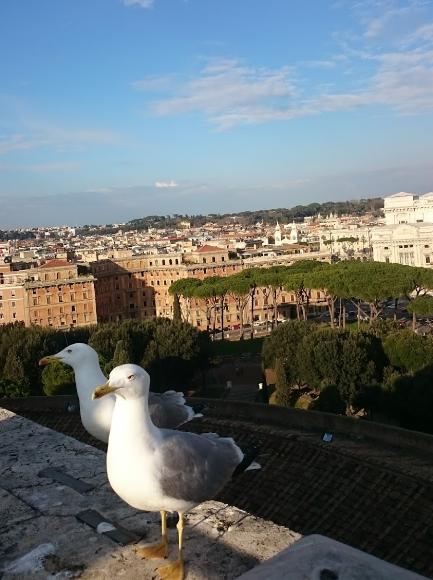 Вид с замка Ангела