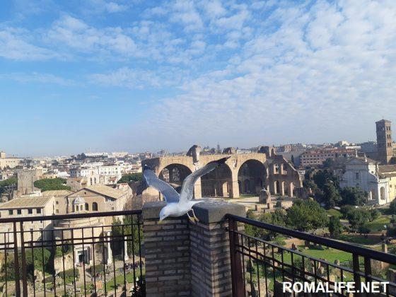 Рим в апреле - Римский форум