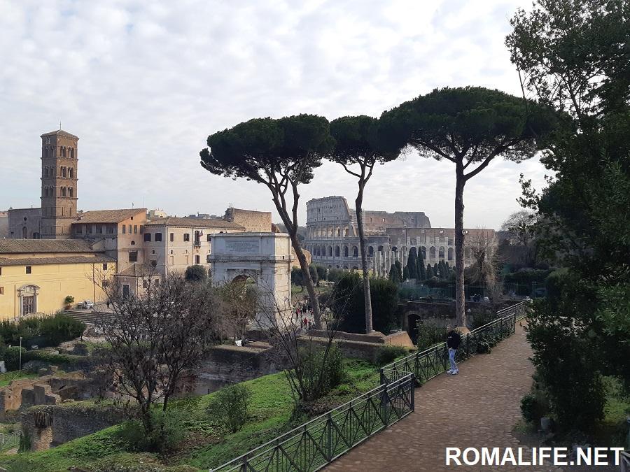 Вид на Колизей с Палатина